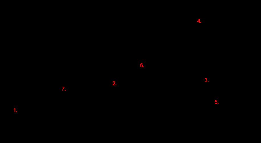 Slika 5: Ishikawa ali ribja kost